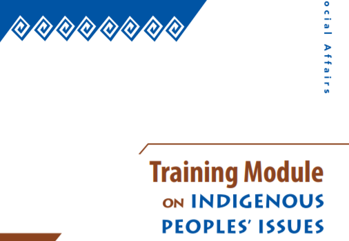 Training Module on Indigenous Peoples Issues: Facilitator's Handbook (UN)