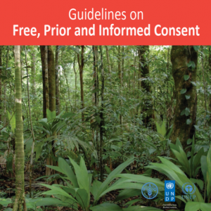 Guidelines on Free, Prior and Informed Consent (UN-REDD)