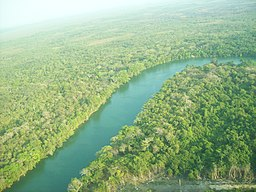 Aerial photo of river surrounded by jungle