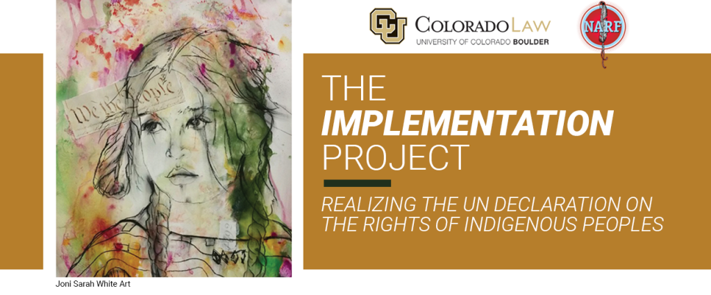 Text: The Implementation Project: Realizing the UN Declaration on the Rights of Indigenous Peoples