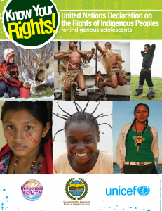 Guide: Know Your Rights! United Nations Declaration on the Rights of Indigenous Peoples for Indigenous Adolescents