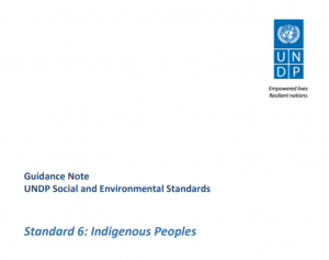 Guidance Note, UN Development Programme Social and Environmental Standards for Standard 6: Indigenous Peoples